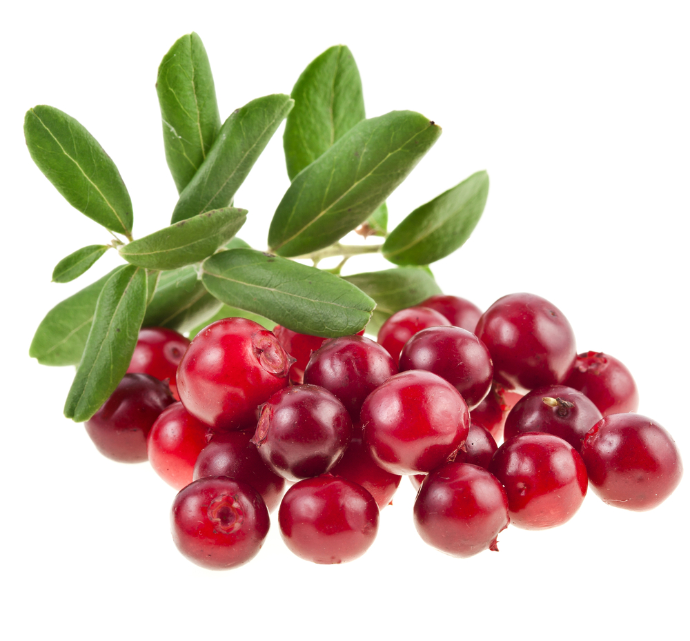 Dental Pros And Cons Of Cranberries This Thanksgiving on November Thanksgiving